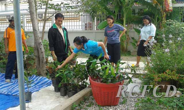 เคลื่อนแล้ว 1,000 ต้น 1,000 ชื่อ…เดินหน้าพัฒนาพื้นที่สุขภาวะ พื้นที่สีเขียว เขตภาษีเจริญ…